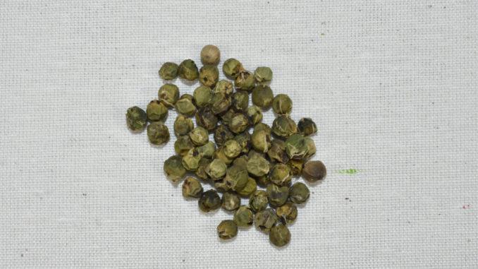Getrockneter grüner Pfeffer in ganzen Körnern.