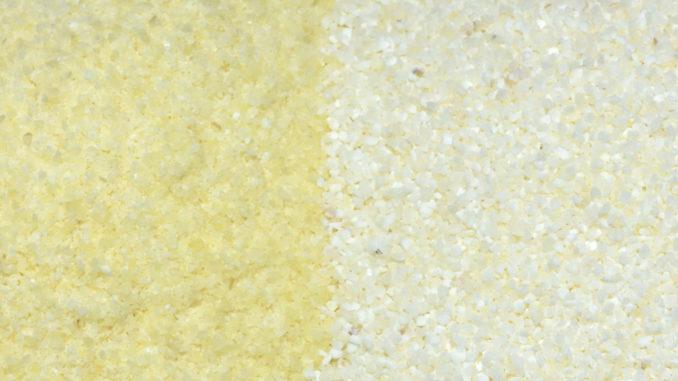 Links: Hartweizengrieß (gut zu erkennen an der goldgelben Farbe). Rechts: Weichweizengrieß.
